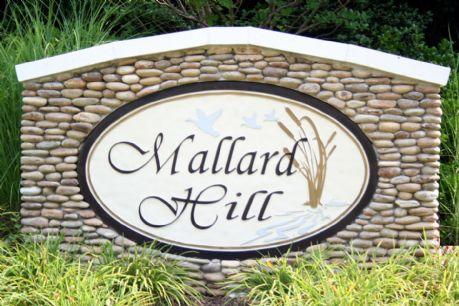 Mallard Hill